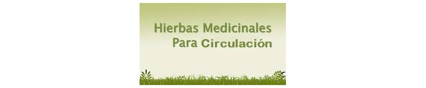 Plantas Sistema Circulatorio