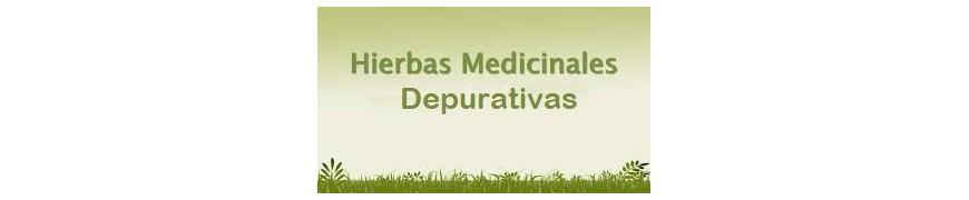 Plantas Depurativas Generales